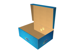shoes-box-3-allinone-fort_003