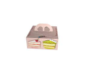 Cake-box-Fort_000