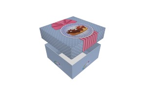 Mini-cake-box-Fort_001