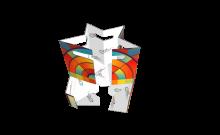 4_pack_cardboard_carrier_for_bottles_or_cans_-_fort_002