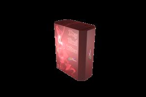 BIB-3l-octagonal-Fort_007